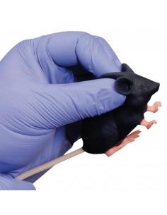 Pelle di ricambio in neoprene per Simulatore Addestramento a Chirurgia e Laparoscopia con diatermia R10083/3
